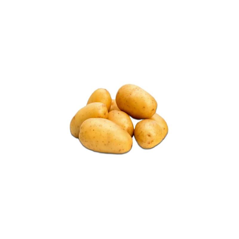Pomme de terre locale groupe charlet - Pomme de terre germee comestible ...